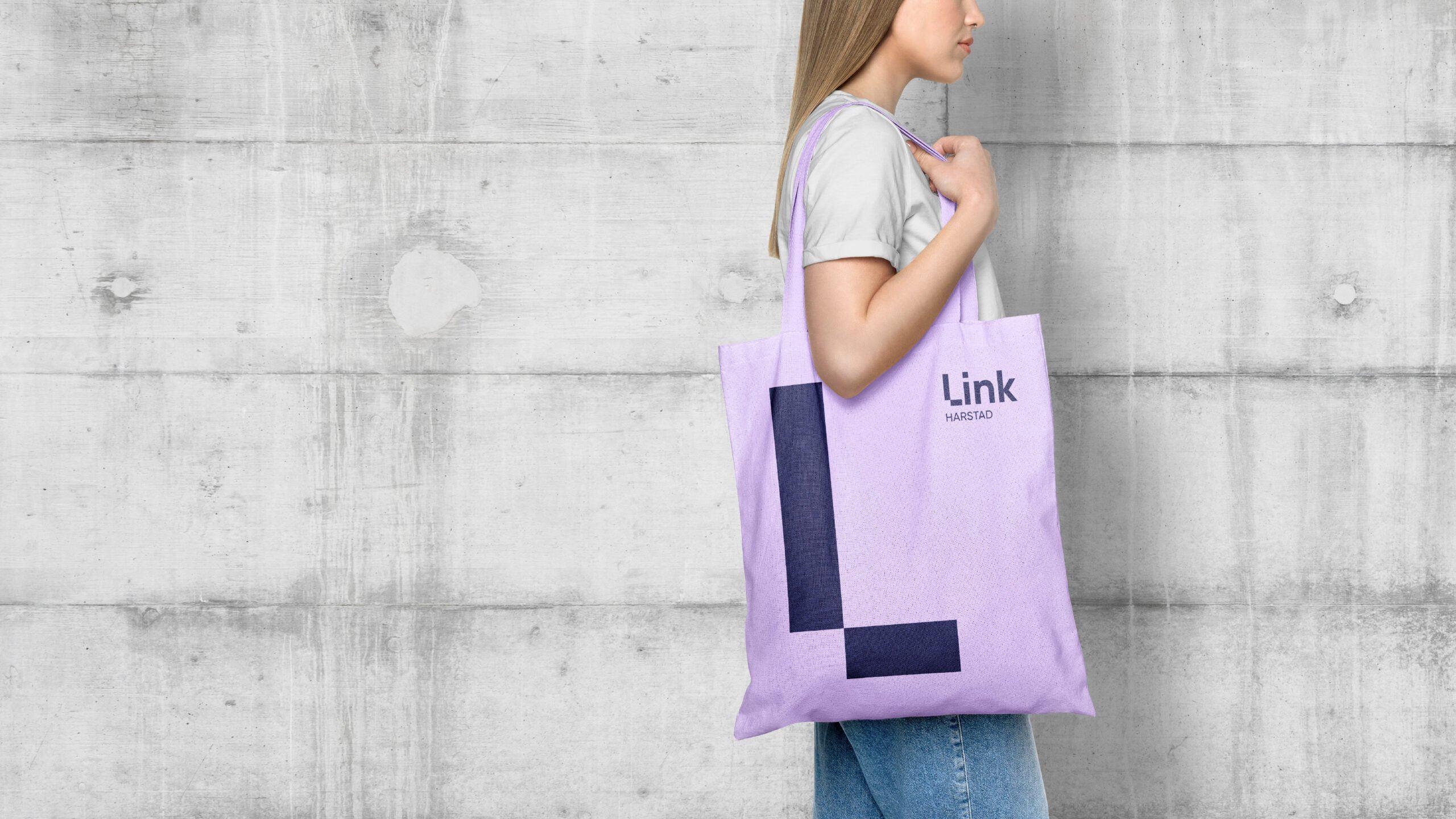 LINK bag